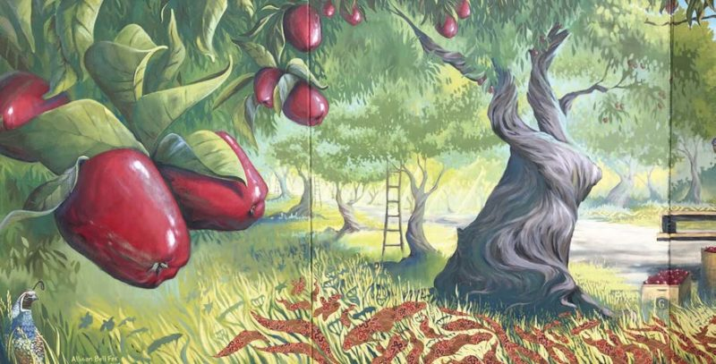 tree with apples illustration